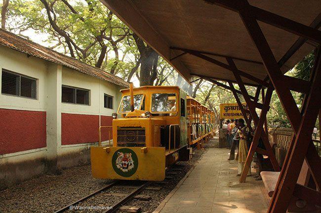 Toy Train at the Sanjay Gandhi National Park