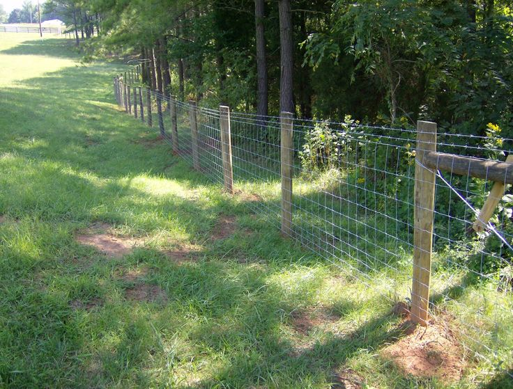farm fence | range of Farm, Ranch and Game Fencing. We sell Hinge Knot Farm Fence ...