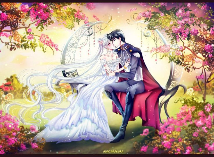 princess serenity and - photo #25