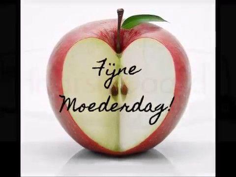 Moederdagontbijt: 10% korting! Wij hebben de lekkerste ingrediënten voor een heerlijk en gezond Moederdagontbijt! Gun je moeder (of je oma, of jezelf, of...) ook zo'n ontbijt en profiteer meteen van 10% korting! Speciaal voor alle moeders (en de rest van de familie) hebben wij namelijk alleen vandaag, zaterdag 13 mei, 10% korting* op:  Aardbeien Eieren Perssinaasappels Flessen sinaasappelsap Saptappen sinaasappelsap * Op=op, aanbieding geldt zolang de voorraad strekt. Bekijk hier het filmpje…
