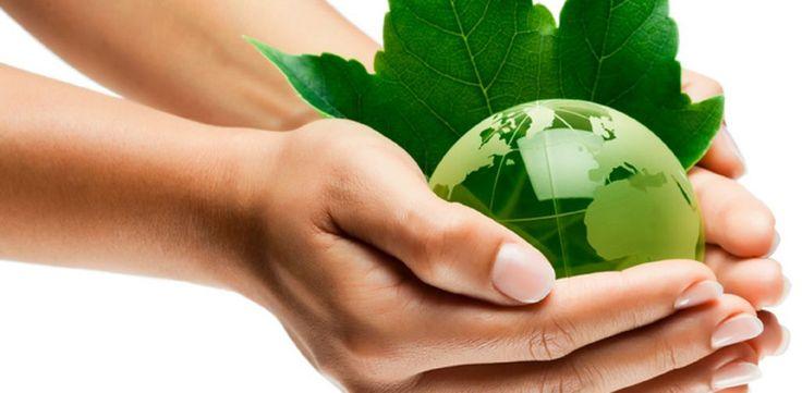 Concepto de Desarrollo Sustentable. Revisa la definición de desarrollo sustentable para poder hacer tus labores escolares y universitarias.