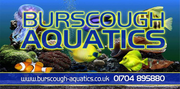 Burscough Aquatics
