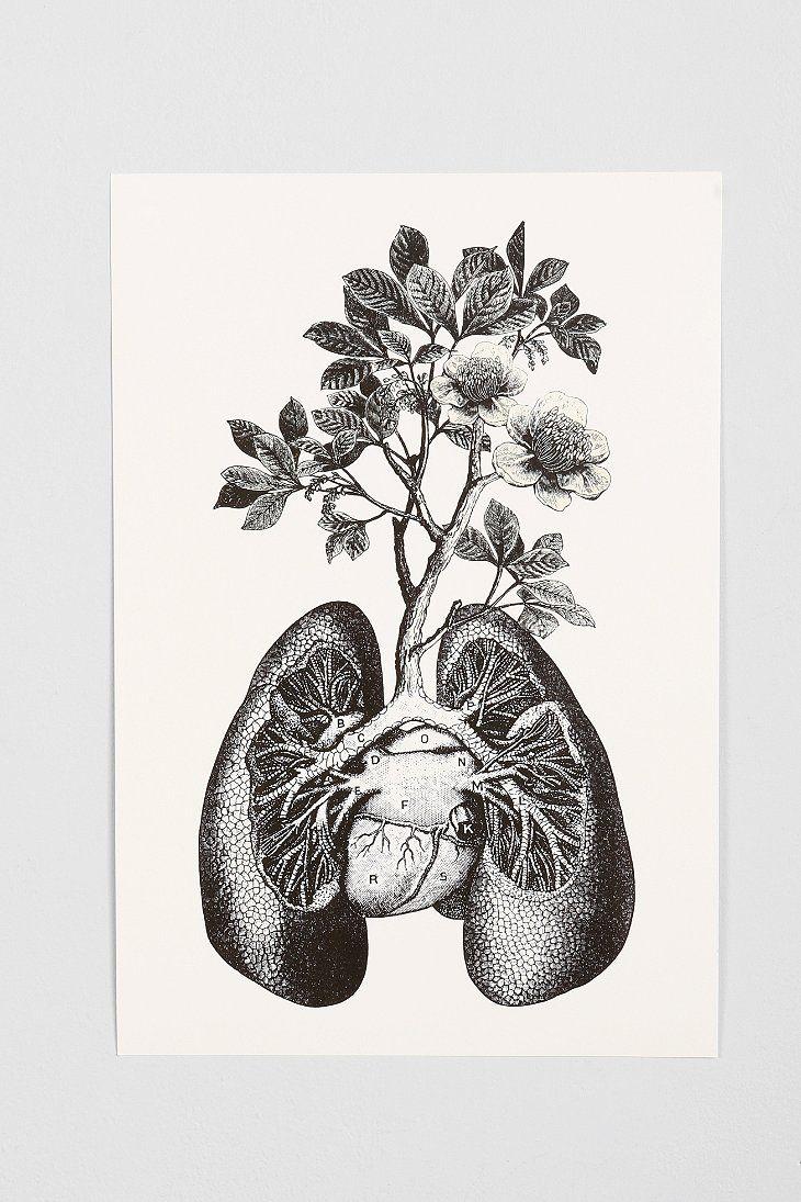 Cirque D Art Lungs Art Print Really Really Cool But Not