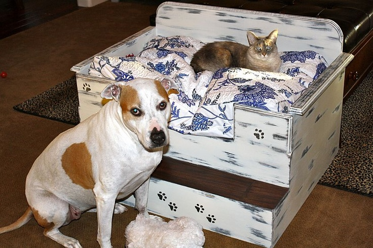 Homemade dog bed or cat bed homemade dog beds and cats for Homemade beds for dogs