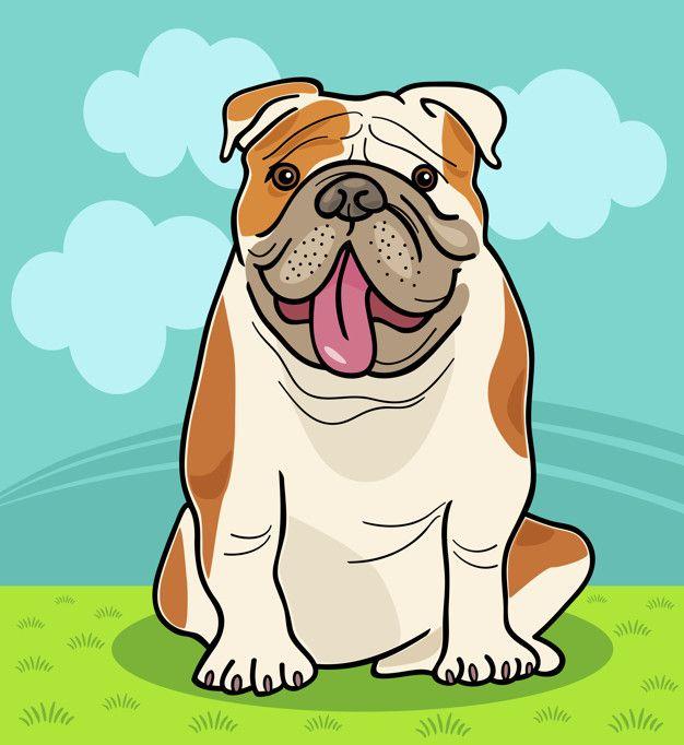 Ilustracion De Dibujos Animados De Perro Bulldog Ingles Vector Premium Bulldog Dibujo Perros Bulldog Perros Bulldog Ingles