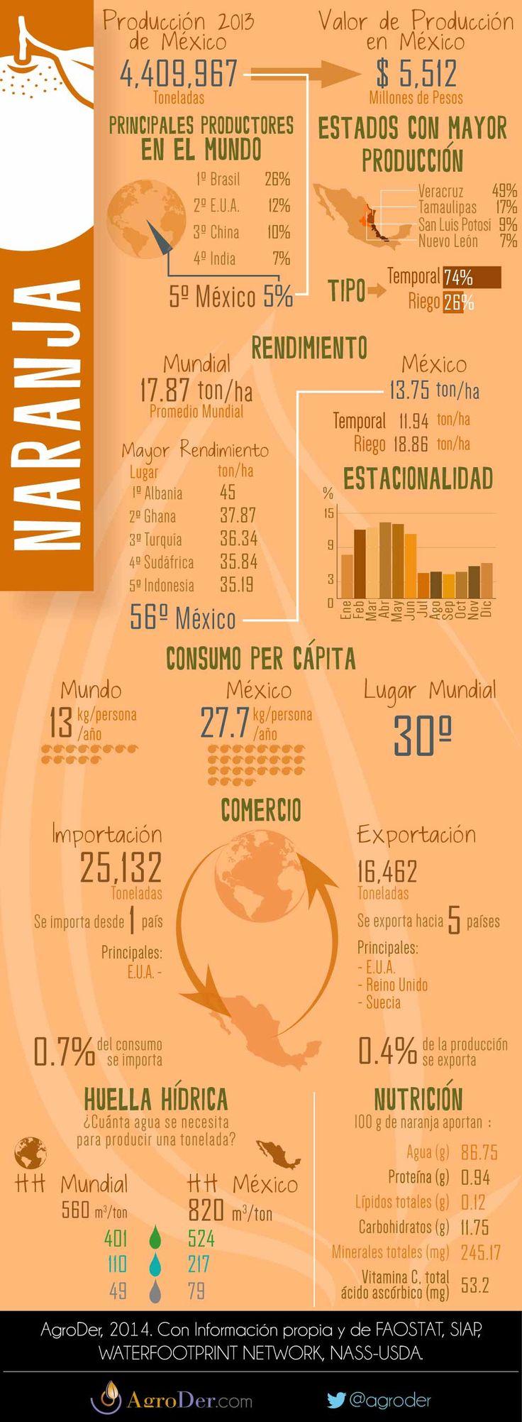 Infografía - Naranja en México, 2013.