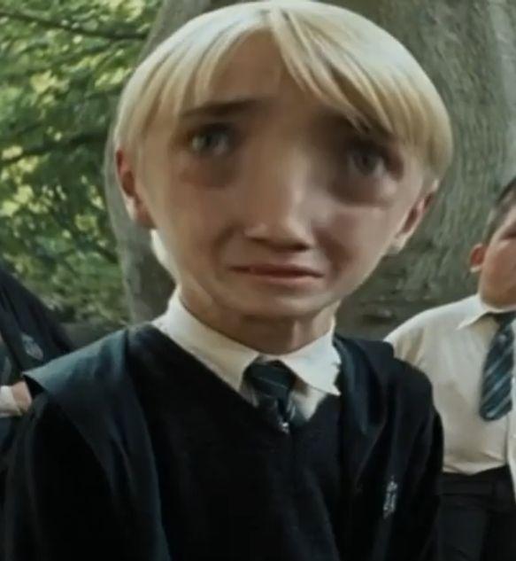 Draco Malfoy Draco Harry Potter Harry Potter Curses Draco Malfoy Funny