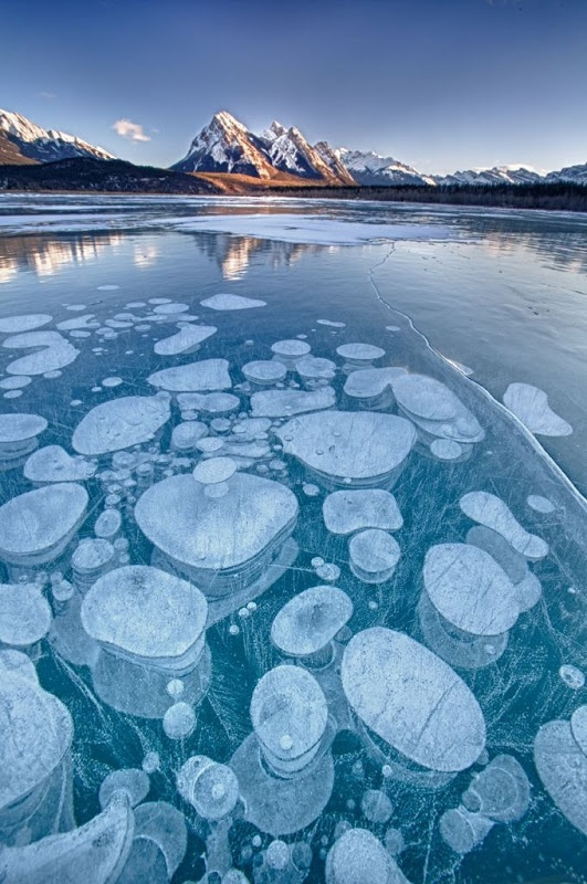 Abraham Lake (Alberta, Canada) is home to a rare phenomenon where bubbles get frozen right underneath its surface. They're often referred to as ice bubbles or frozen bubbles. This has made the lake famous among photographers.