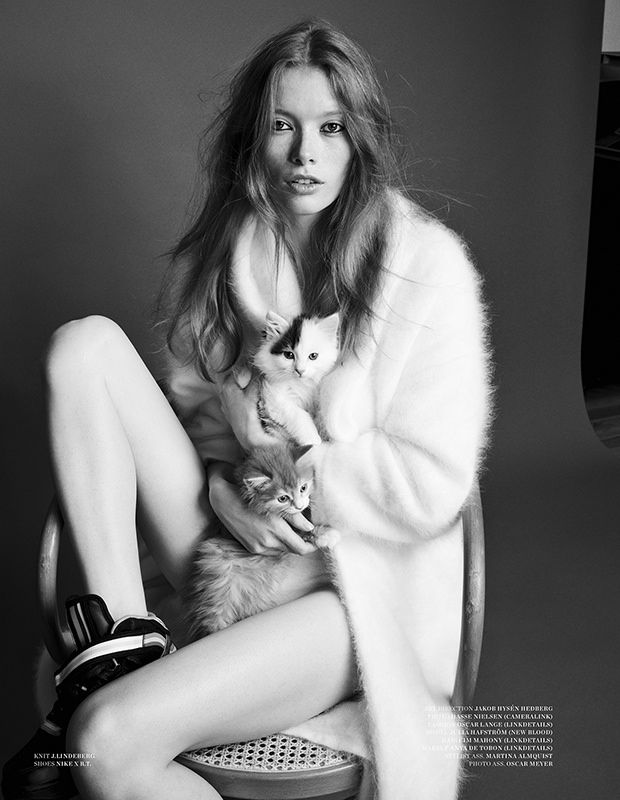 julia hafstrom cat8 Julia Hafstrom Lounges with Cats in Scandinavia S/S/A/W by Hasse Nielsen