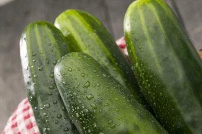 Cucumbers grow well indoors in a container when given the required growing conditions. Bush cucumbers varieties are well suited for indoor containers, as well as outdoor ones, because they grow in ...