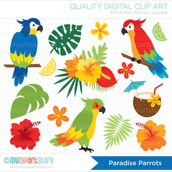 PARADISE PARROTS Vector Clipart: Parrot clipart, tropical plants, coconut cocktail, lemon, lime, fruit slices, summer vacation, hibiscus flowers, hawaii, tropical flowers, palm leaves, luau flowers, aloha, beach, tropical birds, island clipart, --------------------------------------------------------------------------------------- ► Similar Items Available Here: http://etsy.me/1sjhhlT --------------------------------------------------------------------------------------- SPEND ...