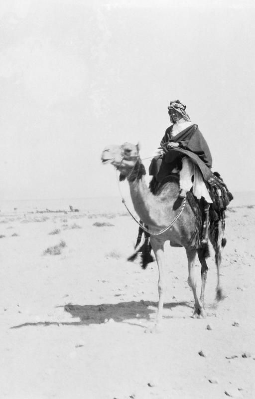 FIRST WORLD WAR 1914 - 1918 PALESTINE MIDDLE EAST (Q 60212)   T E Lawrence, mounted on a camel at Akaba.