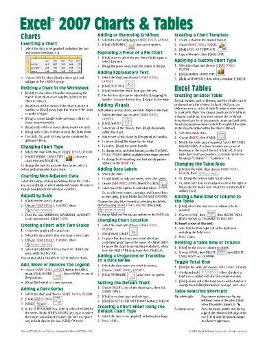 Microsoft Excel 2007 Charts Tables Quick Reference Guide (Cheat Sheet of Instructions, Tips Shortcuts - Laminated Card)