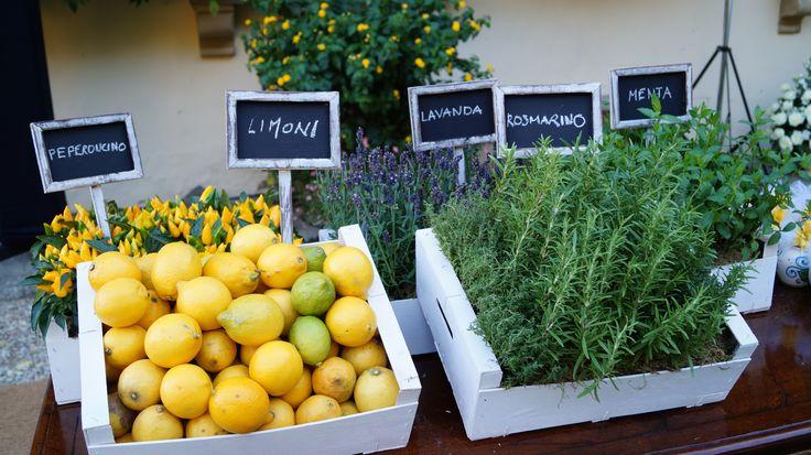 #FLORALIADECOR #GIRITALY #WeddingFavorsTable #Lemons #AromaticPlants