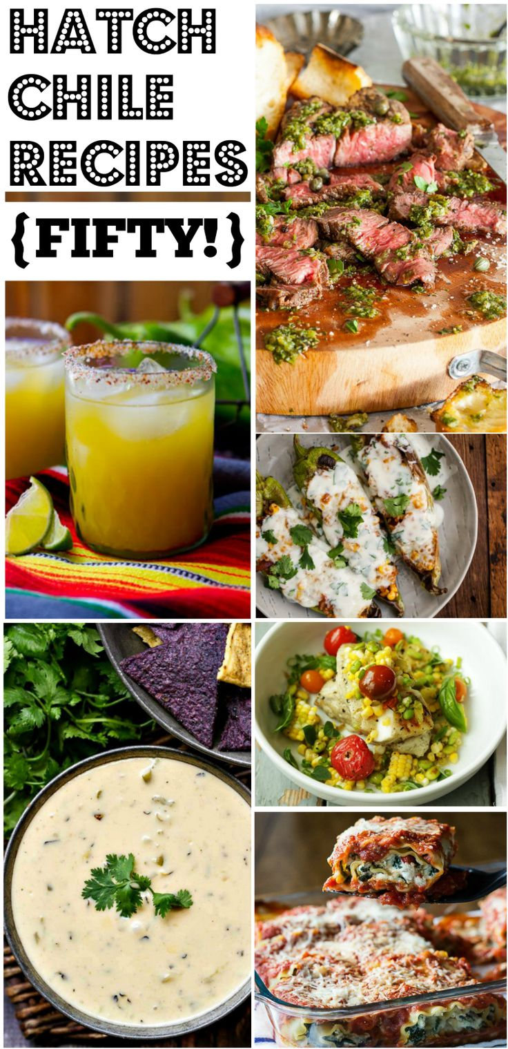 WE SCOURED THE INTERNET TO FIND YOU 50 OF THE MOST DELICIOUS AND CREATIVE HATCH CHILE RECIPES AROUND!