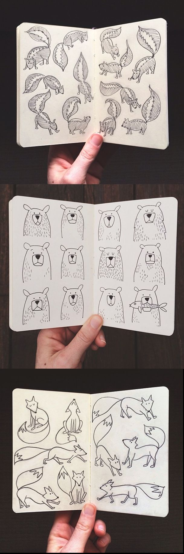 Illustration   1canoe2 - doodle inspiration - skunks, bears, foxes