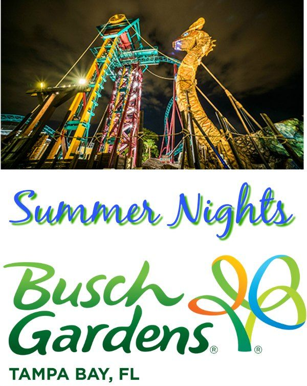 Enjoy the rides and summer cuisine at Busch Gardens Tampa Bay Summer Nights! There are late night hours and lots of fun during Busch Gardens Summer Nights!