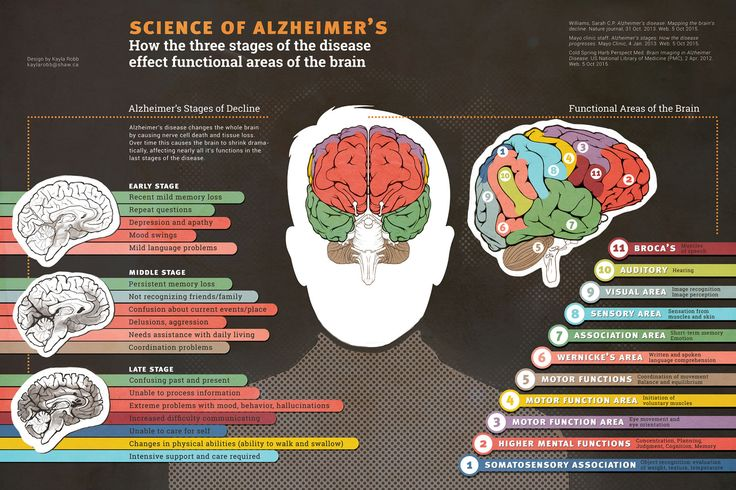 Alzheimer's is a form of dementia that affects 1 in 10 adults over the age of 65. Dementia is characterized by the gradual and progressive loss of memory, thought, and mental abilities. The World Health