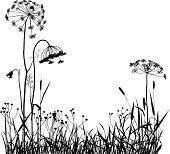 Дикорастущих растений силуэт