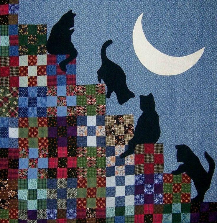 gatos galgando os blocos de patch