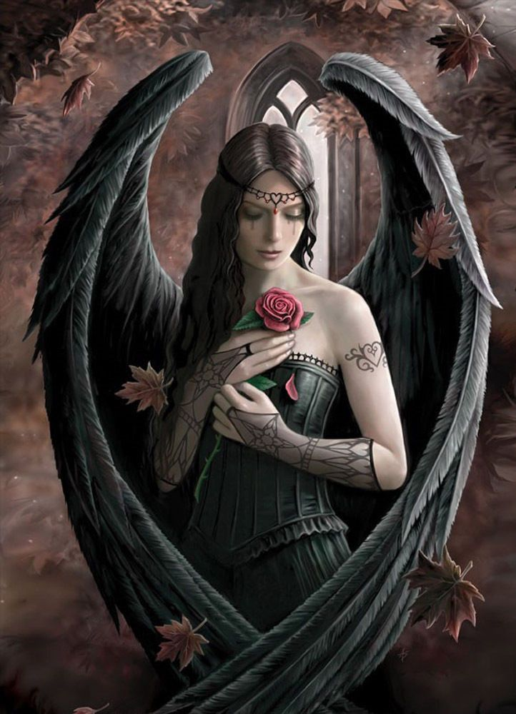 Dark Angel Rose GOTHIC Greeting Card Anne Stokes Angel Red Rose Medieval Card