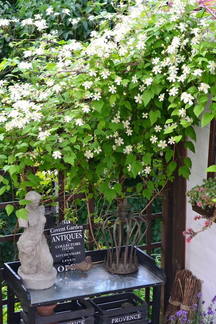 Trädgård plank trädgård : 61 best TrädgÃ¥rd images on Pinterest | Garden fences, Gardens and ...