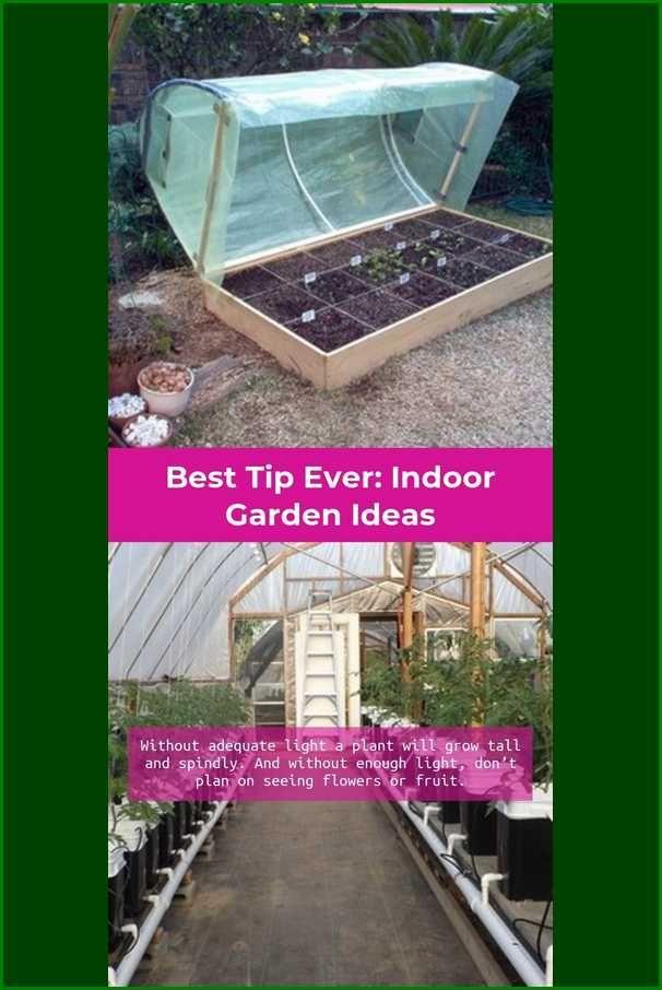 Methods For Knowing The Proper Garden Nutrients Indoor Garden