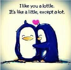 Penguin love!x