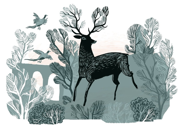 'A noble stag' illustration by Lush Designs - pinned by writer & illustrator www.vickylommatzsch.com