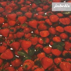 jubelis® Wachstuch Meterware Rollen Erdbeeren Strawberries Fotoprint