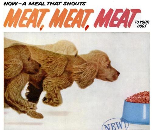 MEAT!: Vintage Ephemera, Magazines Prints, Vintage Dogs, Ads Vintage, Vintage Photo, Vintage Advertising, Dogs Food, 1959 Magazines, Meals Dogs
