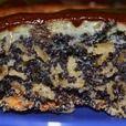 Хрустящий маковый пирог с овсяными хлопьями Источник: http://www.povarenok.ru/recipes/show/89357/