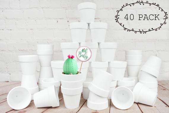 40 Pack 2 Mini Terra Cotta Clay Pots Great For Succulent Cactus Nursery Planter Craft Wedding Party Favors Matte White Bisque Succulent Pots Terracotta Pots Plant Crafts