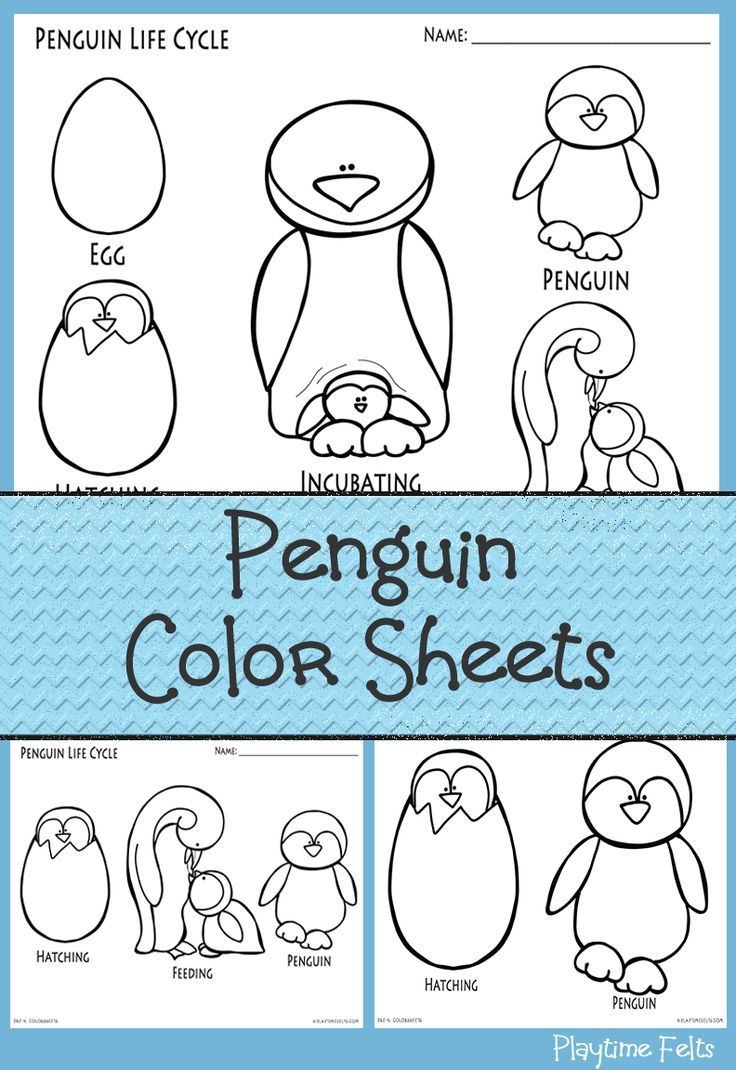 Penguin coloring sheets for preschoolers available at Playtime Felts ...
