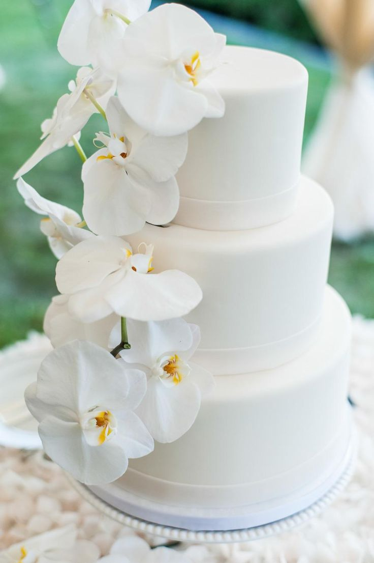 Fine art designers of wedding cakes exist all over the world, and we're highlighting just a few of our favorites today. These 25 creations are the perfect evidence that beautiful cakes are not hard to come by. The key is to find a designer who loves color, texture, and will take the time to understand […]