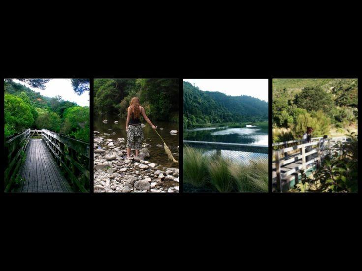 Scenic Wainuiomata NZ #wainuiomatanz #getwildlyactive