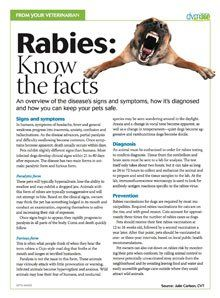 Educate your clients on rabies--dvm360
