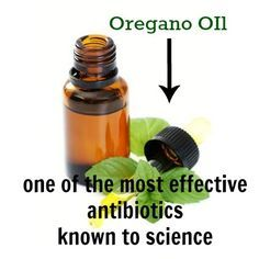 Oregano Oil is the most effective natural antibiotic known to science! http://lahealthyliving.com