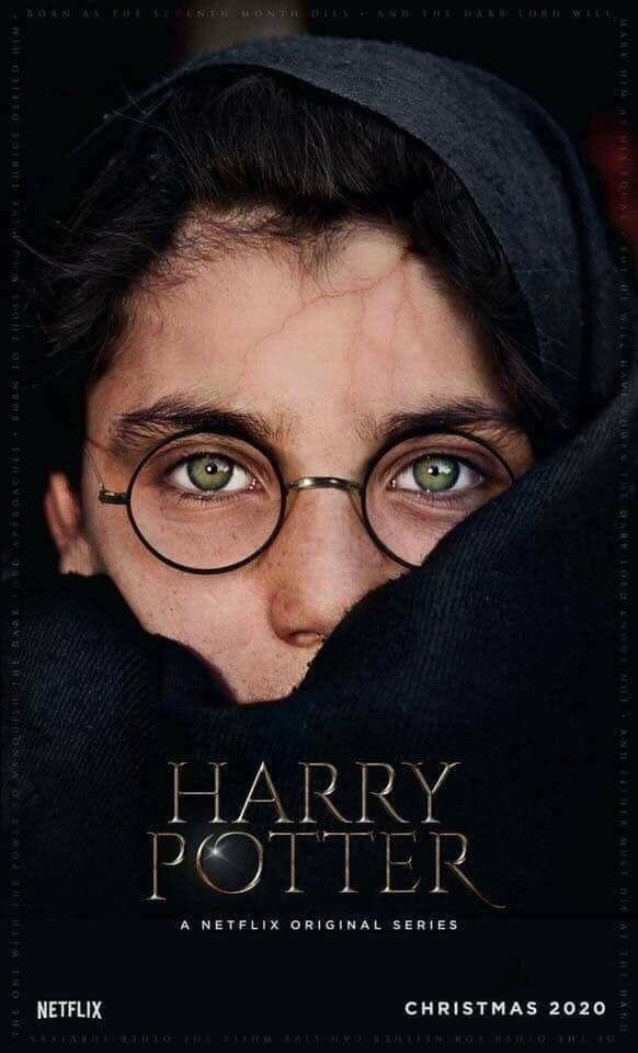 Harrypotter Television Tvshows Posters Hp Netflix Is This For Real Harry Potter Scar Fantastic Beasts Harry Potter Netflix