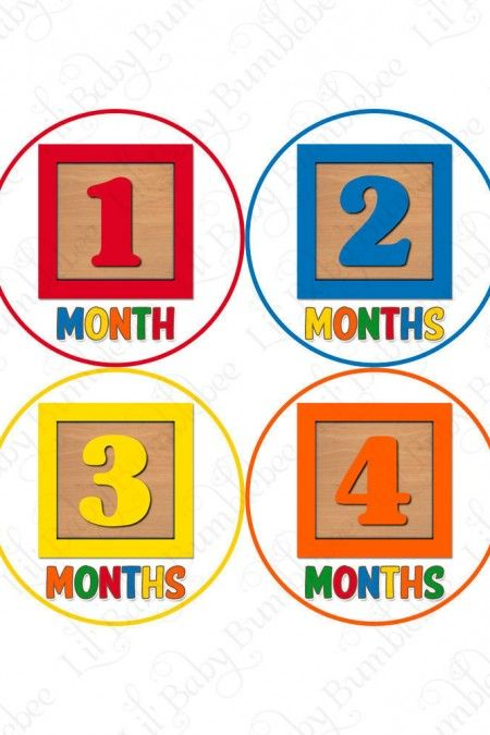 Monthly Baby Milestone Stickers are a unique and perfect way to document your little one throughout their first year of life. These photo props are stickers that are placed on your child's bodysuit or shirt for picture taking.
