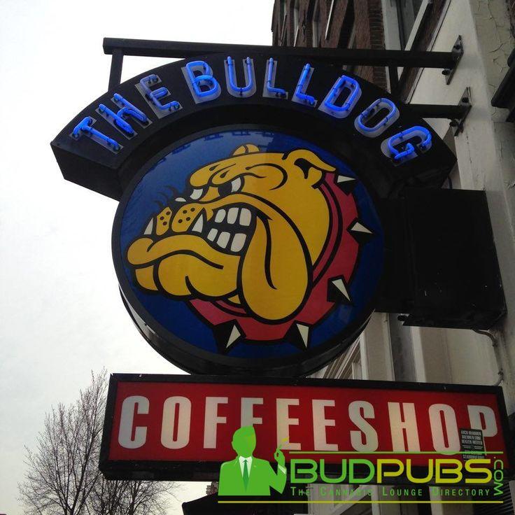 The World Famous Bulldog Café in Amsterdam! www.BudPubs.com #Cannabis #Amsterdam #Weed #Maryjane #Grass #Travel #CannabisCoffeeShops #MarijuanaCafes