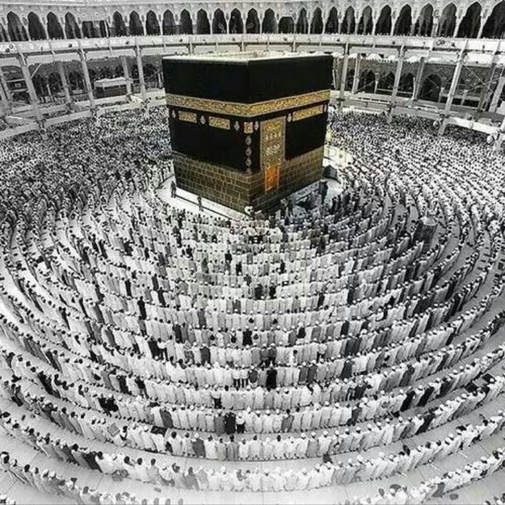 essay on hajj-pilgrimage