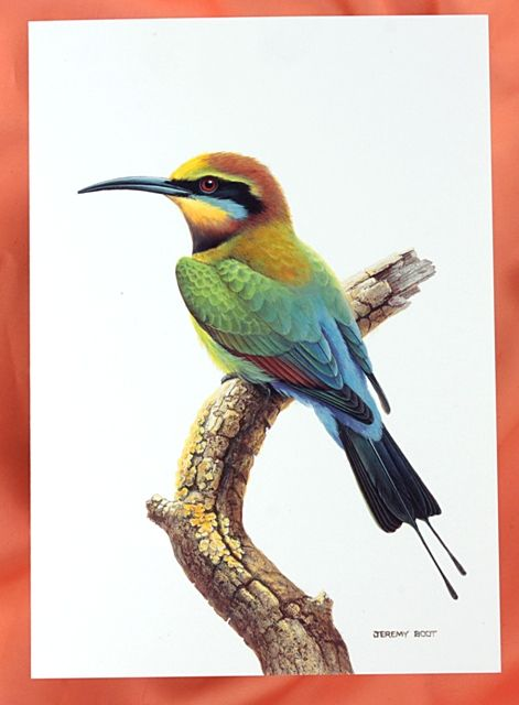 A stunning painting from the well known artist Jeremy Boot, (greeting card)