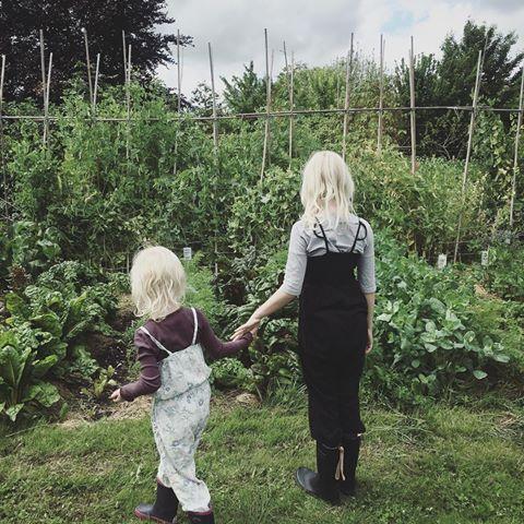 At Fuglebjerggard you will find the most beatiful kitchengarden ever!  #organic #kitchengarden #fuglebjerggaard #trellies #finca #ecofinca #welovegardening #mygirls #biodiversity #gardening #haver #økohave #økologi #camillaplum #køkkenhave #ærter #espalier #trädgård #ecologi #beatifulgarden #farming #kitchengardenersintetnational