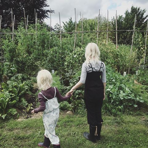 At Fuglebjerggard you will find the most beatiful kitchengarden ever!  #organic #kitchengarden #fuglebjerggaard #trellies #finca #ecofinca #welovegardening #mygirls #biodiversity #gardening #haver #økohave #økologi #camillaplum #køkkenhave #ærter #espalier #trädgård #ecologi #beatifulgarden #farming #kitchengardenersintetnational