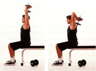 seated tricep press Repetitions: 12,10, 8, 6, 12, 12