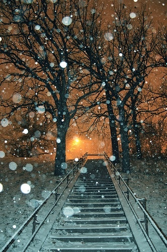 Snow flakes gently falling...a magical evening