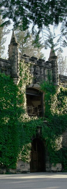 ✮ Chateau Montelena Winery - Historic and beautiful castle - like winery in Calistoga, CA
