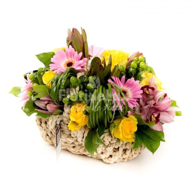 Un cosulet dragalas - plin de flori, plin de prospetime si abundent in culori. Cosul contine flori proaspete de gerbera, orhidee si minirosa, cos rachita crem si decor verdeata.