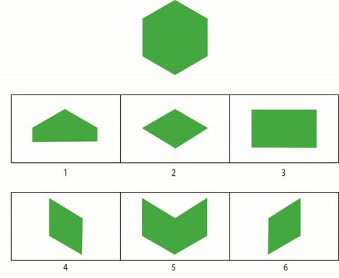 WISC-V Visual Puzzles Practice